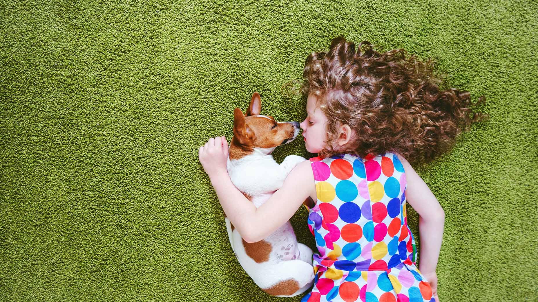 LCS clean carpet girl dog